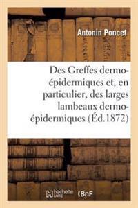 Des Greffes Dermo-Epidermiques Et, En Particulier, Des Larges Lambeaux Dermo-Epidermiques