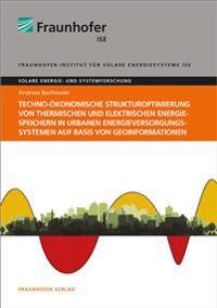 Techno-ökonomische Strukturoptimierung von thermischen und elektrischen Energiespeichern in urbanen Energieversorgungssystemen auf Basis von Geoinformationen.