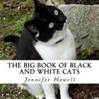 The Big Book of Black and White Cats: A Text-Free Book for Seniors and Alzheimer's Patients