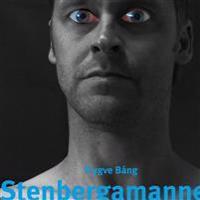 Stenbergamannen : en roman med verklighetsbakgrund