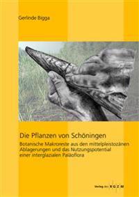 Die Pflanzen Von Schoningen: Botanische Makroreste Aus Den Mittelpleistozanen Ablagerungen Und Das Nutzungspotential Einer Interglazialen Palaoflor
