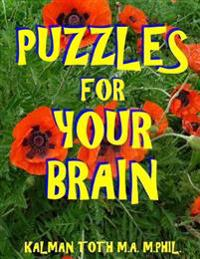 Puzzles for Your Brain: 133 Large Print Word Search Puzzles