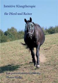Intuitive Klangtherapie Fur Pferd Und Reiter