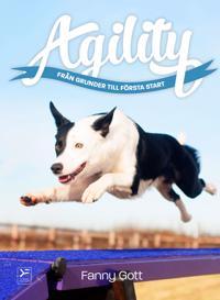 Agility : från grunder till första start