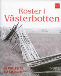 Röster i Västerbotten : en antologi