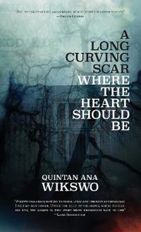 A Long Curving Scar Where the Heart Should Be
