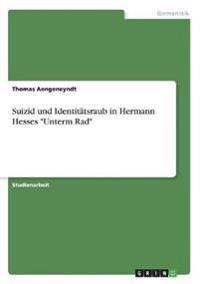 """Suizid und Identitätsraub in Hermann Hesses """"Unterm Rad"""""""
