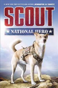 Scout: National Hero