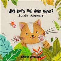 Why Does the Wind Move?: Bundi's Adventures