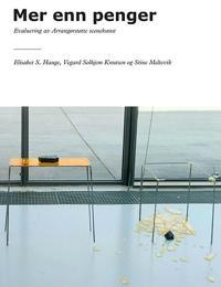 Mer enn penger - Elisabet S. Hauge, Vegard Solhjem Knutsen, Stine Meltevik pdf epub