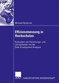 Effizienzmessung in Hochschulen