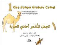 One Humpy Grumpy Camel