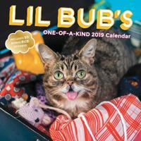 Lil Bub's One-of-a-Kind 2019 Calendar