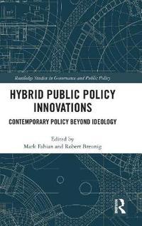 Hybrid Public Policy Innovations