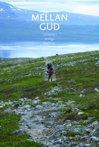 Mellan Gud : vandring i andliga landskap