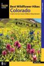 Best Wildflower Hikes Colorado
