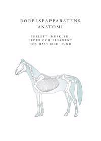Rörelseapparatens anatomi : skelett, muskler, leder och ligament hos häst och hund