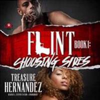 Flint, Book 1: Choosing Sides