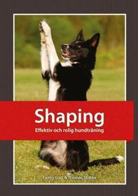Shaping : effektiv och rolig hundträning