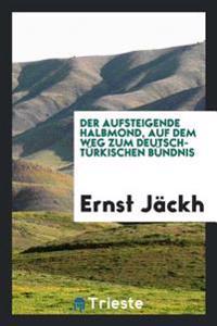 Der Aufsteigende Halbmond, Auf Dem Weg Zum Deutsch-Turkischen Bundnis