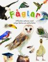 Fåglar : utforska naturen med roliga fakta och aktiviteter