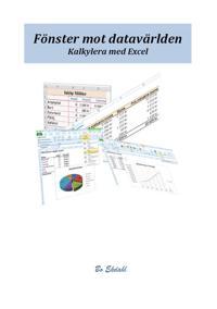 Fönster mot datavärlden. Kalkylera med Excel