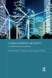 China's Energy Security: A Multidimensional Perspective