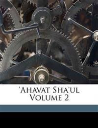 'Ahavat Sha'ul Volume 2