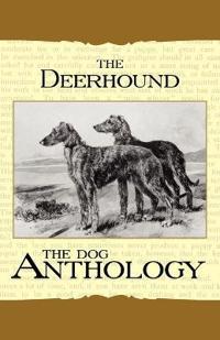 The Deerhound - a Dog Anthology