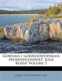 Gornaia i gornozavodskaia promyshlennost' iuga Rossii Volume 1