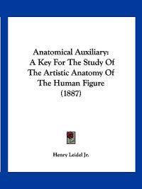 Anatomical Auxiliary