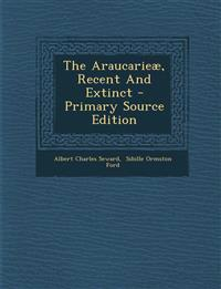 The Araucarieæ, Recent And Extinct - Primary Source Edition
