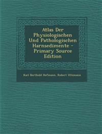 Atlas Der Physiologischen Und Pathologischen Harnsedimente - Primary Source Edition