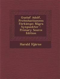 Gustaf Adolf, Protestantismens Förkämpe; Några Synpunkter
