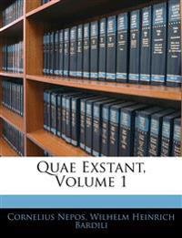 Quae Exstant, Volume 1