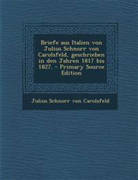 Briefe aus Italien von Julius Schnorr von Carolsfeld, geschrieben in den Jahren 1817 bis 1827.