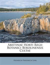 Abietinae Horti Regii Botanici Berolinensis Cultae