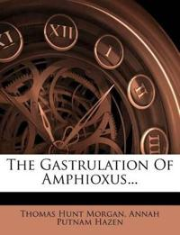 The Gastrulation Of Amphioxus...