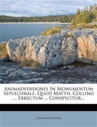 Animadversiones In Monumentum Sepulchrale, Quod Matth. Collino ... Errectum ... Conspicitur...