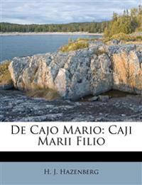 De Cajo Mario: Caji Marii Filio