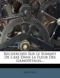 Recherches Sur Le Sommet De L'axe Dans La Fleur Des Gamopétales...