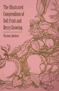 The Illustrated Compendium of Soft Fruit and Berry Growing