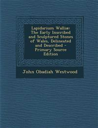 Lapidarium Walliae: The Early Inscribed and Sculptured Stones of Wales, Delineated and Described - Primary Source Edition
