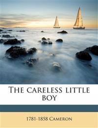 The careless little boy