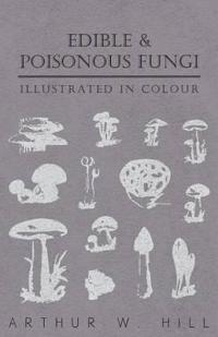 Edible and Poisonous Fungi - Illustrated in Colour