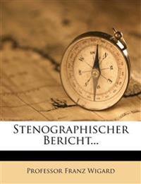 Stenographischer Bericht...