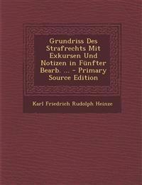 Grundriss Des Strafrechts Mit Exkursen Und Notizen in Funfter Bearb. ... - Primary Source Edition