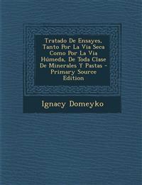 Tratado de Ensayes, Tanto Por La Via Seca Como Por La Via Humeda, de Toda Clase de Minerales y Pastas - Primary Source Edition