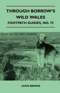 Through Borrow's Wild Wales - Footpath Guide