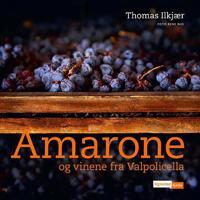 Amarone og vinene fra Valpolicella